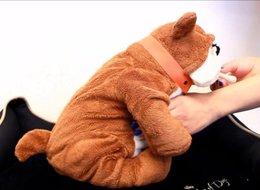 בובת כלב מדמה תהליך לידה ואכילה