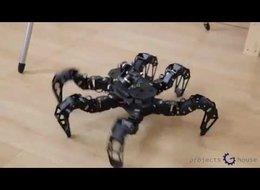 רובוט עכביש